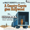 A Country Coyote Goes Hollywood LG-784P
